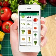 Best Grocery Delivery App Builder in USA