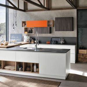 Costly Designs and Modern Sydney Kitchens - Eurolife.